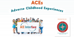 Online 2 Hr ACE Interface Training @ Zoom - Webinar